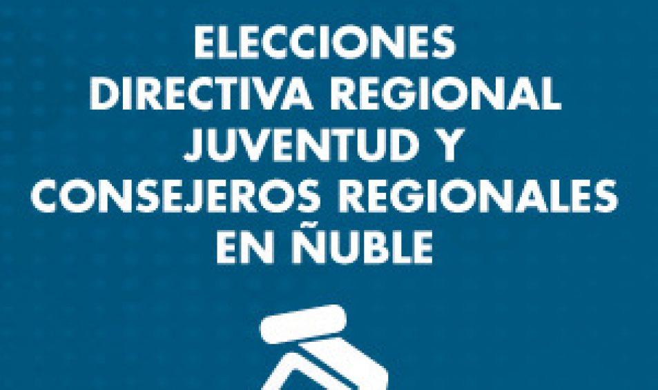 ¡Atención! Se necesitan vocales para elecciones en Ñuble